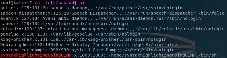 Command and Text Highlighting on Kali Terminal